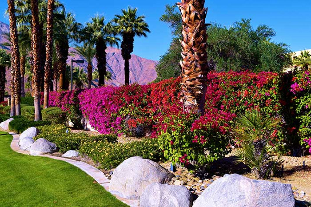 Add Colorful Flower Beds to Your Yard