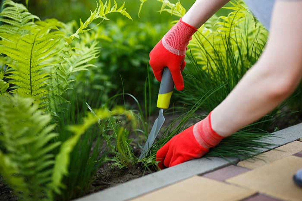 Does Your Landscape Look Neglected? Call Valentine Landscaping of NCF